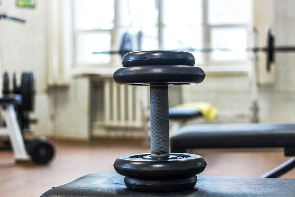 Definizione muscolare: il terrore di perdere massa