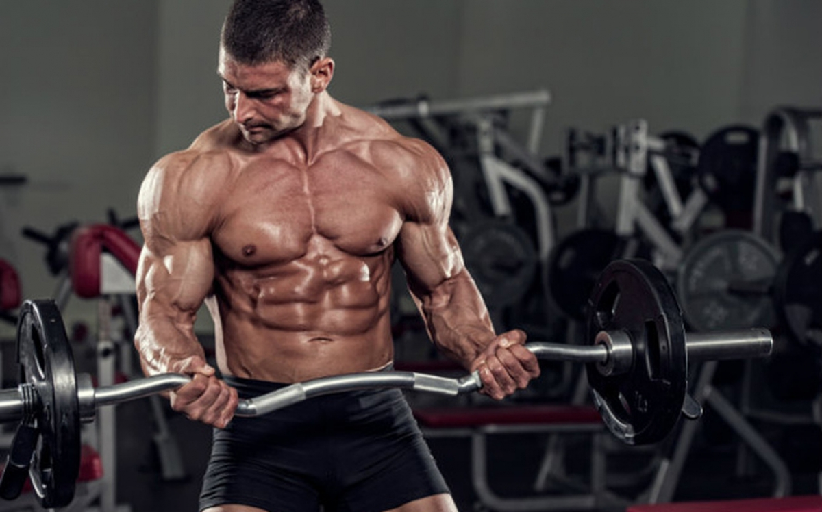Scheda palestra Massa Muscolare | Gli Esercizi Migliori.