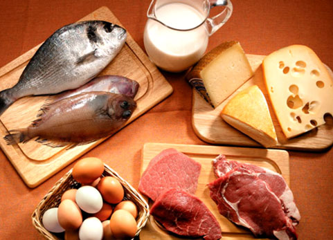 Alimentazione e massa muscolare