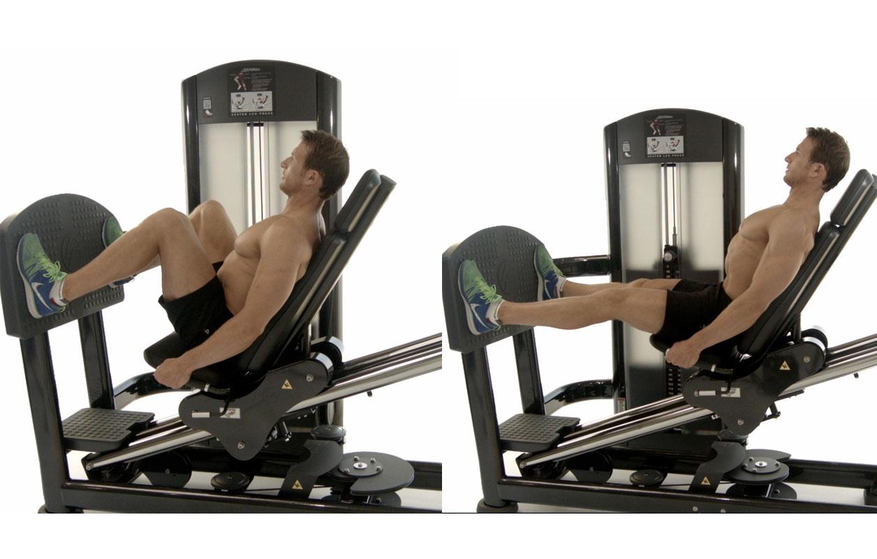 Pressa Orizzontale. Esercizi, Postura e Muscoli Coinvolti.